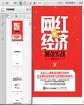 网络营销:网红经济成功实战268页