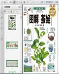 茶文化:茶经――中国茶道(图解)331页