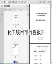 化工项目可行性报告